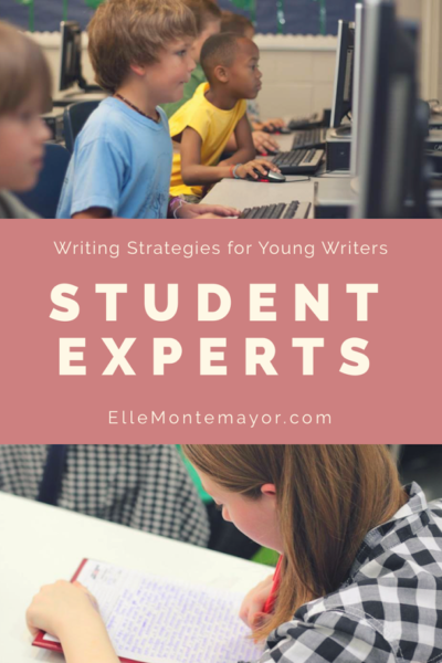 Writing Strategies: Student Experts